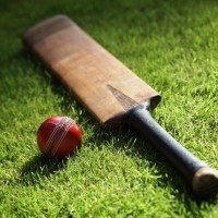 Cricket-and-entrepreneurship
